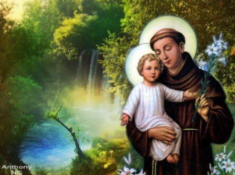 Ngày 13/6: Thánh Antôn Padua, Linh mục-Tiến sĩ Hội thánh