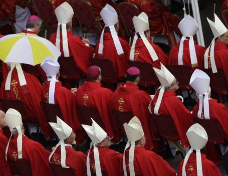 Những vị nào sẽ được tấn phong Hồng Y trong công nghị sắp tới? Việt Nam không còn Hồng Y cử tri vào tháng Tư tới.