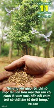 [AUDIO THÁNH LỄ] CHÚA NHẬT XI THƯỜNG NIÊN DỤ NGÔN NGƯỜI GIEO GIỐNG NĂM B THÁNH LỄ THIẾU NHI